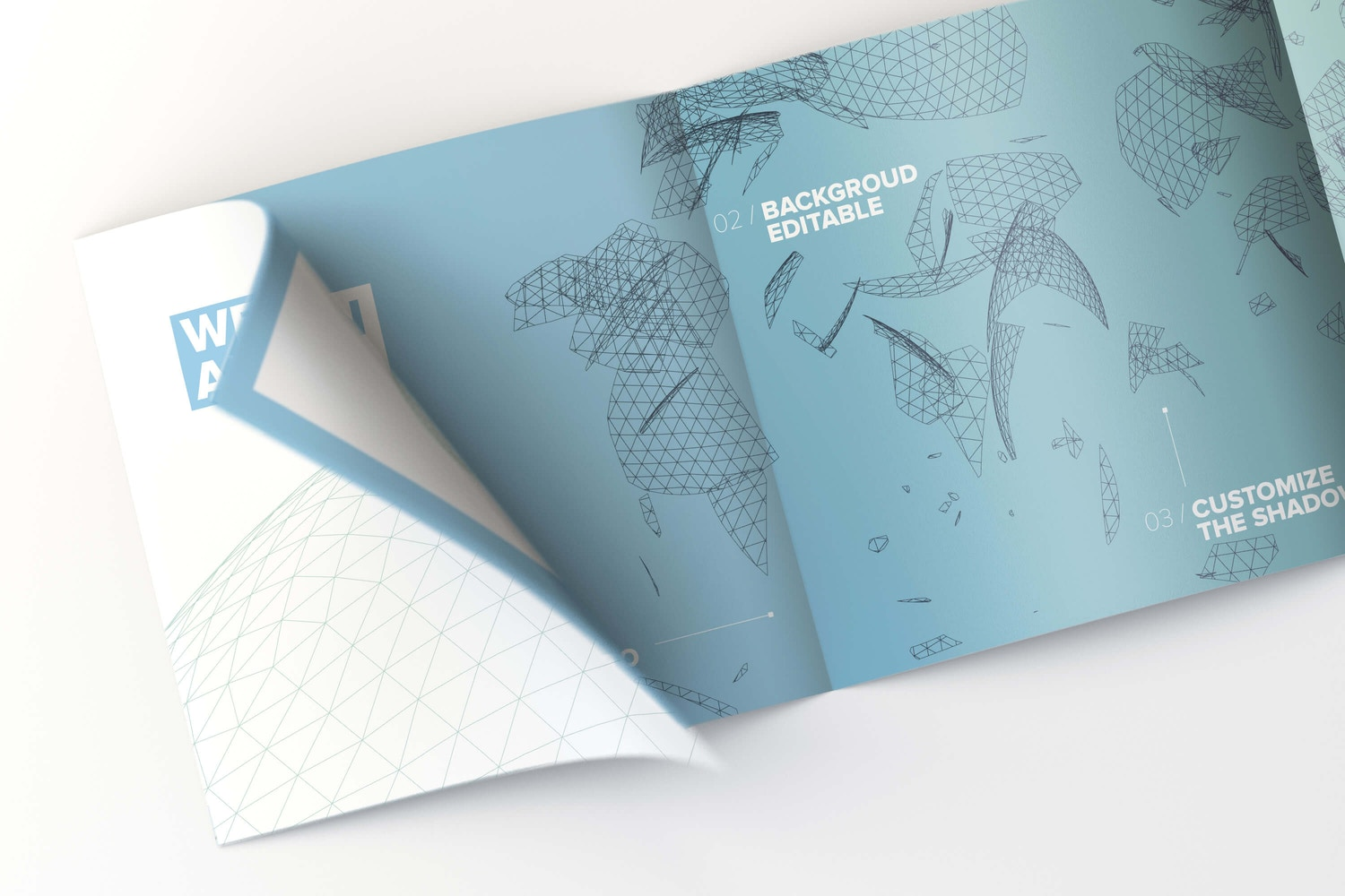 Mockup 8: Inner view of the brochure with curly page with deep of field