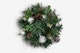 Christmas Pine Tree Isolate