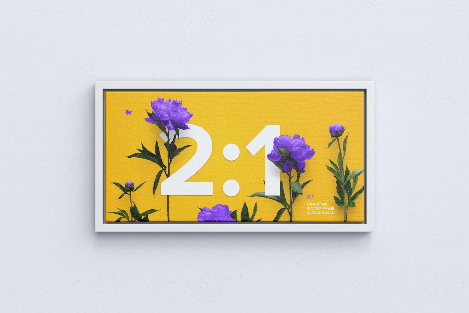 2:1 Landscape Canvas Mockup in Floater Frame, Front View