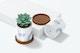 Ceramic Cylindrical Plant Pots Mockup, Dropped