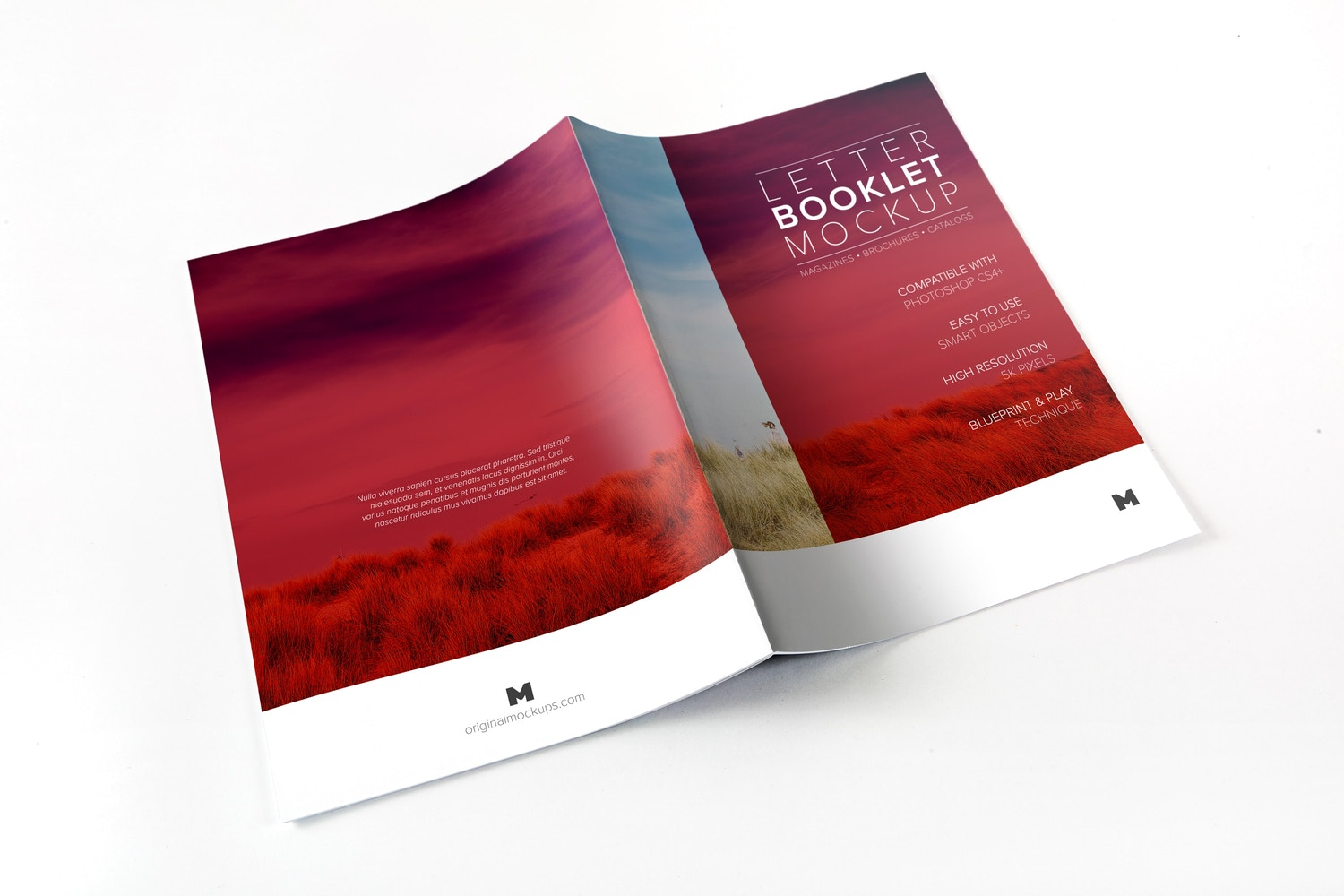 Letter Booklet Spreads Covers Mockup 01 by Original Mockups on Original Mockups
