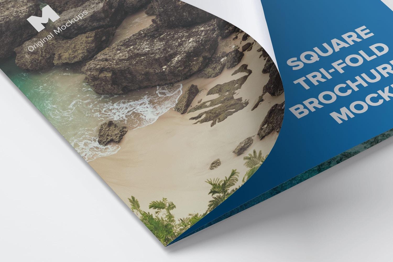 Square Tri-Fold Brochure Mockup 02