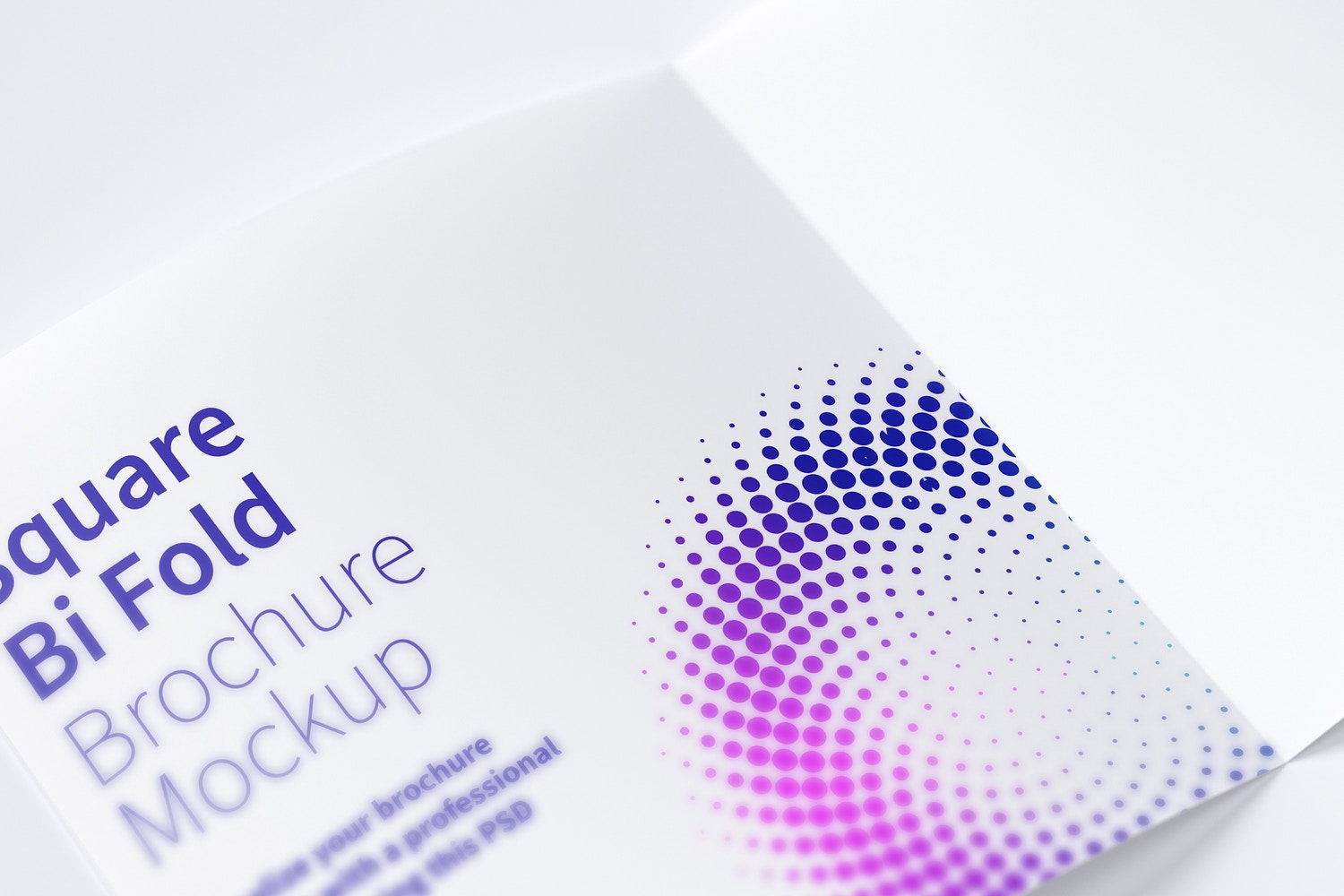 Square Bi Fold Brochure Mockup 05 by Original Mockups on Original Mockups