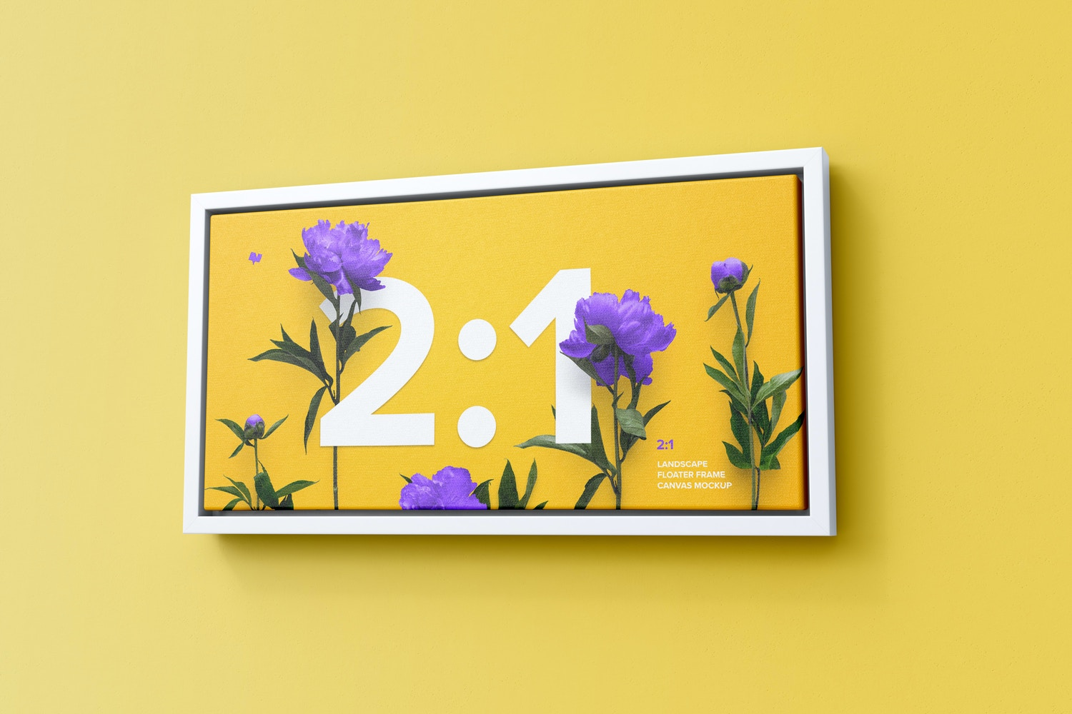 2:1 Landscape Canvas Mockup in Floater Frame, Right View