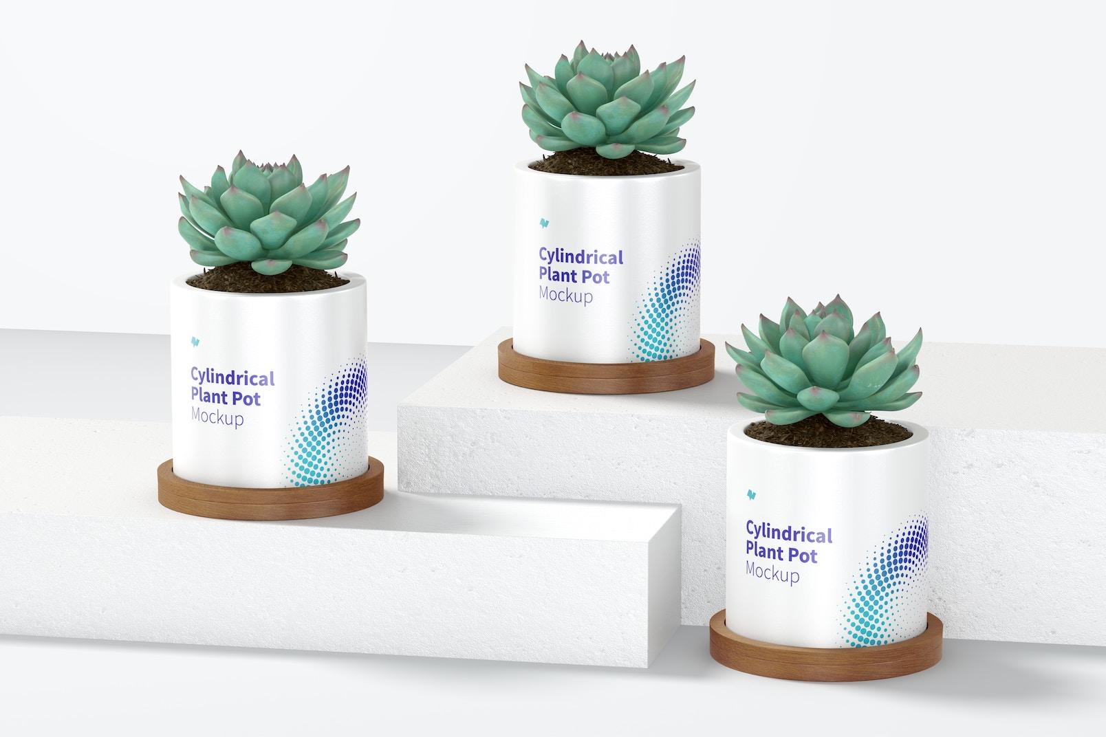 Ceramic Cylindrical Plant Pot Set Mockup