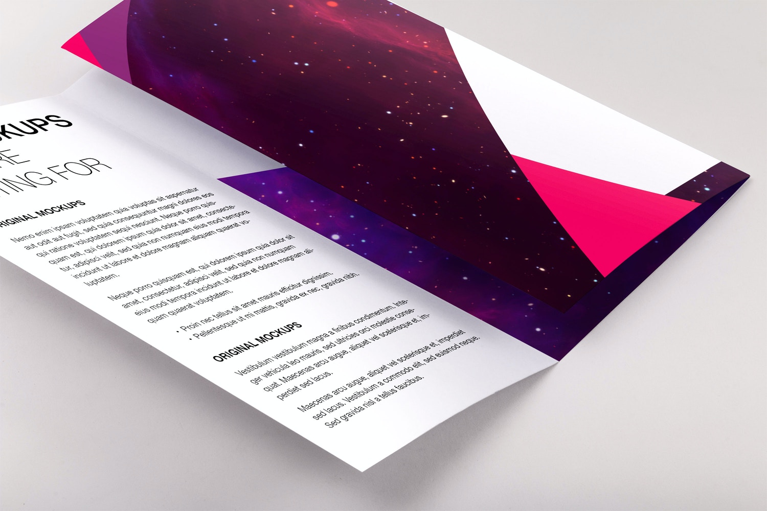 Legal Trifold Brochure PSD Mockup 01 by Original Mockups on Original Mockups