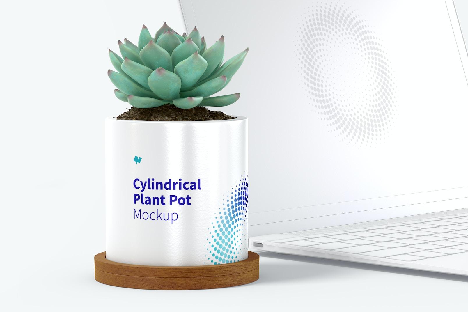 Ceramic Cylindrical Plant Pot and Laptop Mockup
