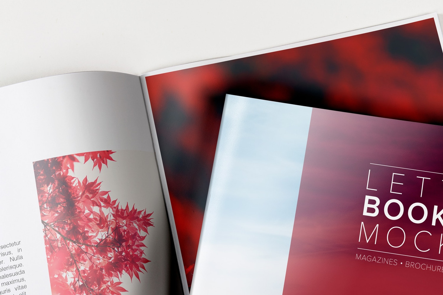 letter booklet cover spread mockup for catalog brochure and