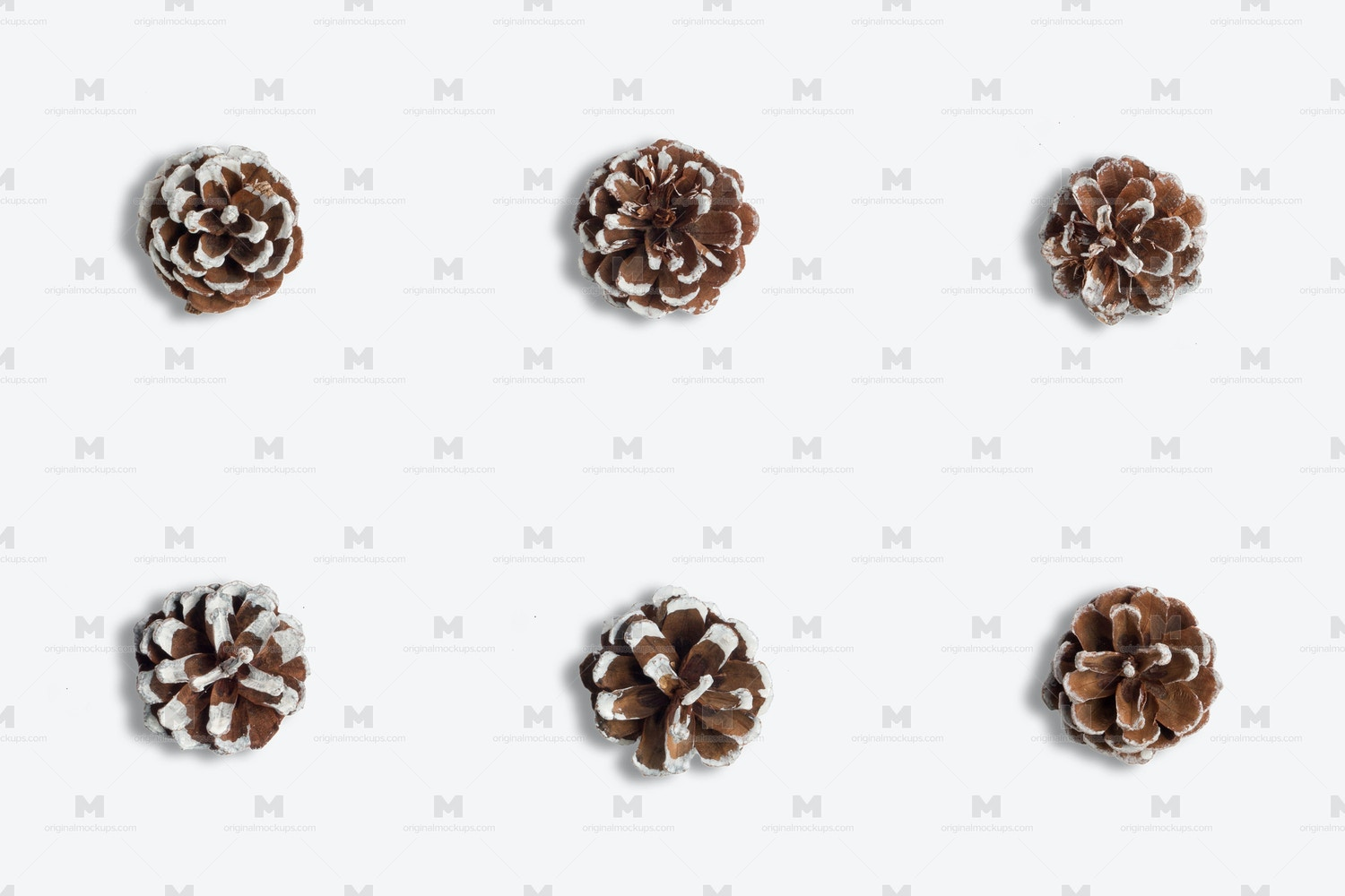 Christmas Snow Pinecones Isolate by Original Mockups on Original Mockups