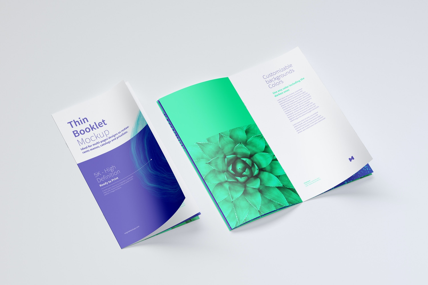 Show the cover and internal page of your design